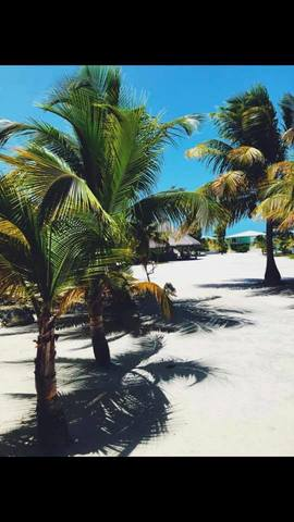 Belize Exclusive Secluded Island Beach Day Pass Excursion Perfect!