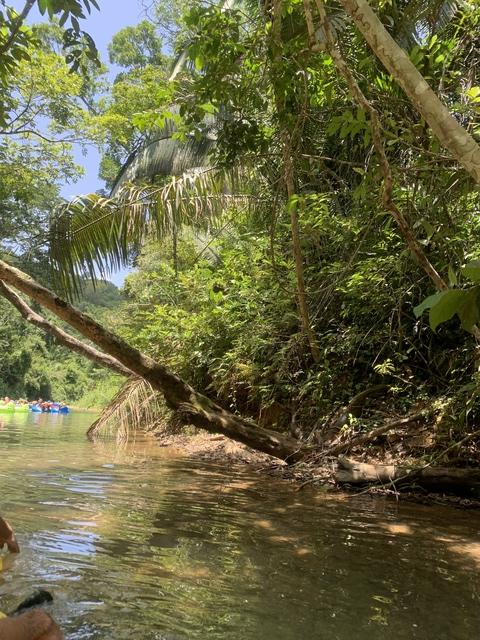 Belize Nohoch Che'en Caves Branch Cave Tubing Excursion Ask for Manuel!! Had a super time!