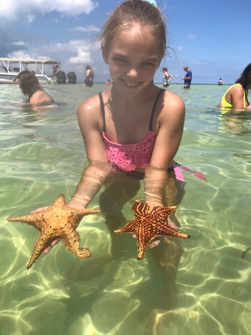Grand Cayman Stingray City, Coral Gardens Snorkel and Turtle Farm Excursion Great Experience