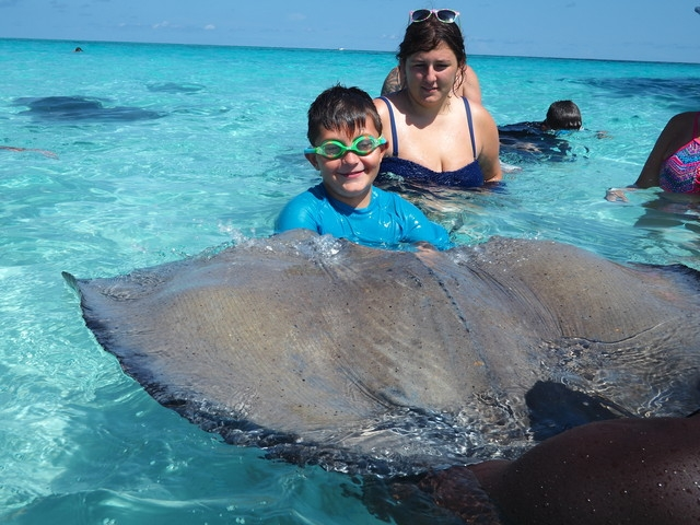 Grand Cayman Stingray City, Coral Gardens Snorkel and Turtle Farm Excursion Amazing experience!