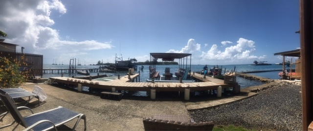 Roatan Relaxed Drift Snorkel, Monkey and Sloth Hangout and Little French Key Beach Break Excursion AMAZING!