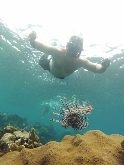 Roatan South Side Snorkel and Beach Break Excursion  Eat excursion ever