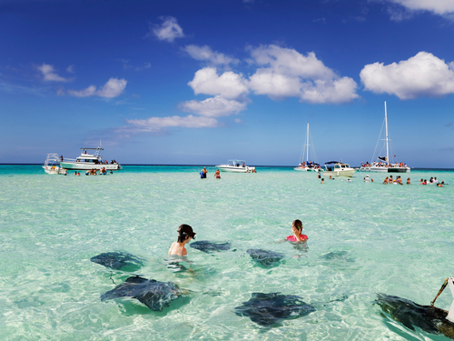 Grand Cayman  Cayman Islands southern stingray Cruise Excursion Booking