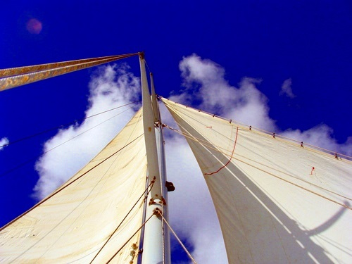 Bonaire sailboat Excursion Reviews