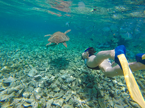 Belize Belize City Family Snorkeling Cruise Excursion Booking