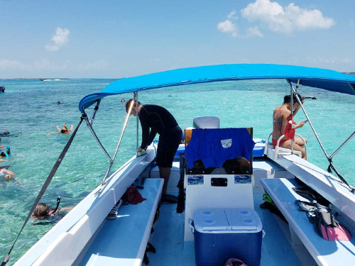 Belize Belize City Tropical Fish Snorkeling Trip Reservations