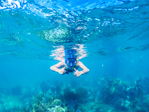 Belize Family Snorkeling Excursion Booking