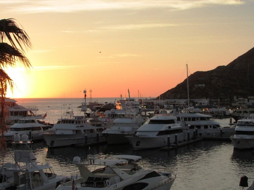 Cabo San Lucas  Mexico glass bottom boat  Prices