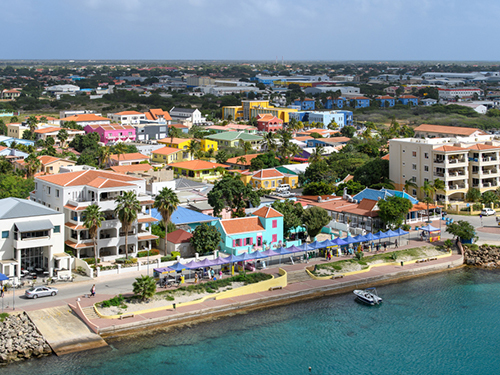 Bonaire 1000 Steps Sightseeing Shore Excursion Reviews