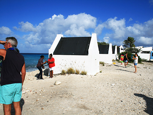 Bonaire Family Sightseeing Excursion Reservations