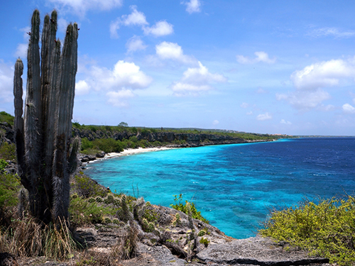 Bonaire Family Sightseeing Shore Excursion Tickets