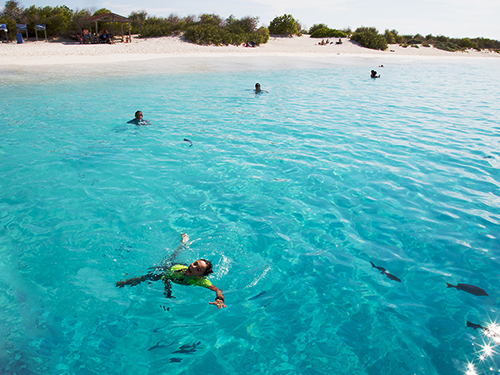Bonaire Deserted Island Sail Shore Excursion Reviews