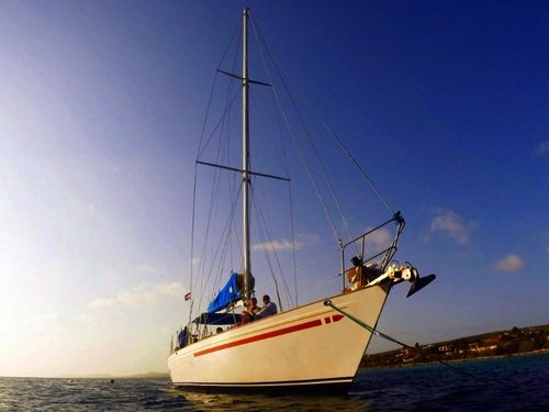 Bonaire (Kralendijk) coastal cruise Trip Booking