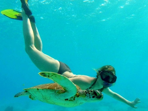 Bonaire sail and snorkel Excursion Reviews