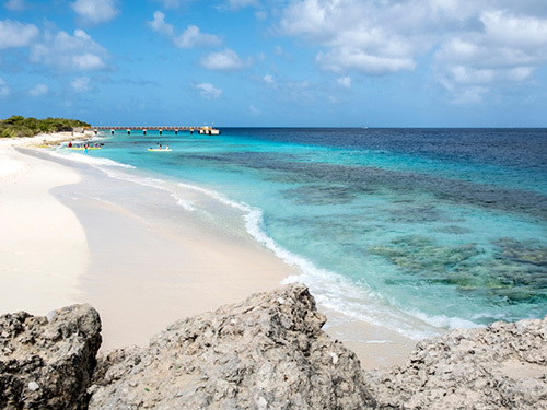 Bonaire Te Amo Beach Beach Break Shore Excursion Tickets