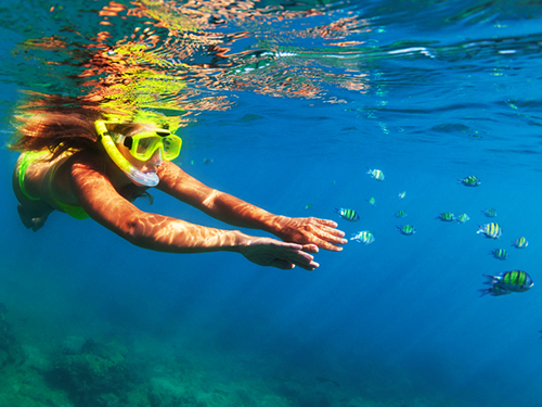 Bonaire Drinks Snorkel Tour Booking