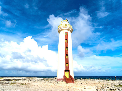 Bonaire Salt Flats Sightseeing Trip Prices