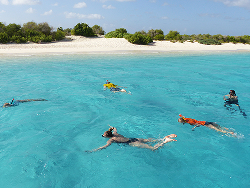 Bonaire Family Snorkel Tour Reviews
