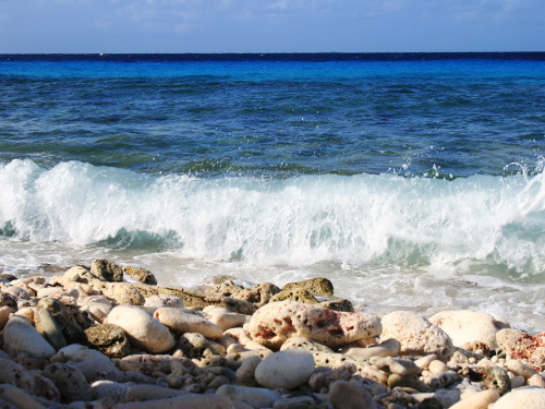 Bonaire Kaya Grandi Sightseeing Cruise Excursion Prices