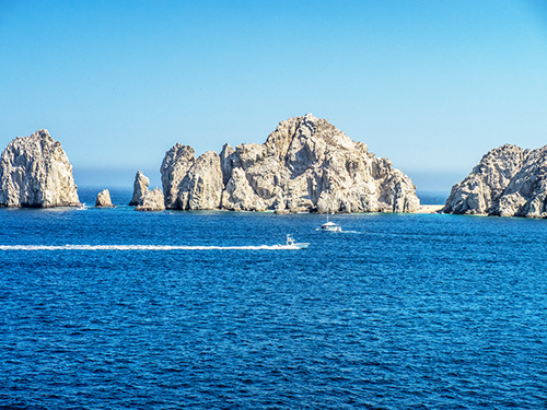 Cabo San Lucas Seniors Whale Watching Tour Reviews