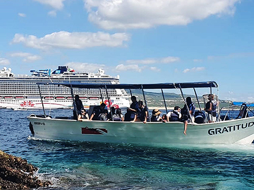 Cabo San Lucas Mexico Family Whale Watching Cruise Excursion Booking