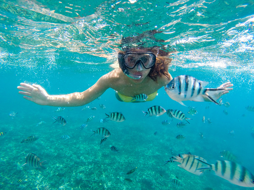 Costa Maya Mexico (Mahahual) Snorkeling by Boat Excursion Prices