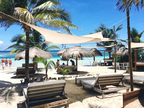 Costa Maya Mexico Swimming Trip Reservations