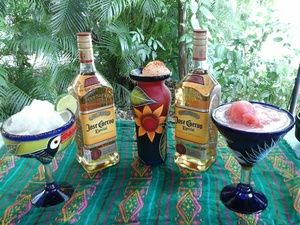 Cozumel Discover Mexico Park and Jose Cuervo Tequila Tasting Excursion