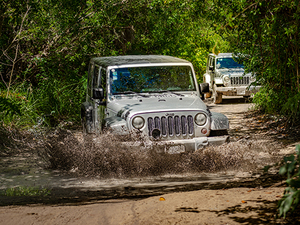 Cozumel Jeep Adventure to All-Inclusive Passion Island Excursion