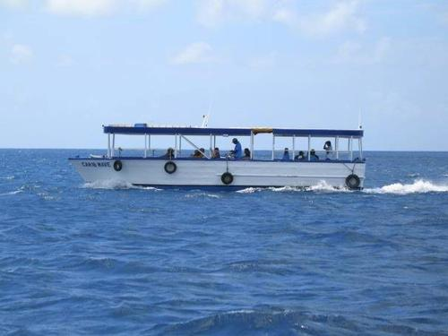 Grand Cayman scuba diving Excursion Reviews