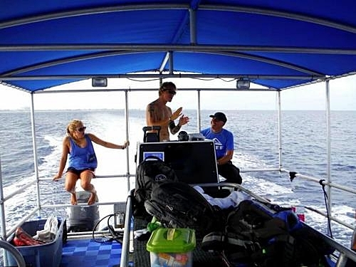 Grand Cayman George Town padi diving Trip Prices