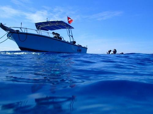 Grand Cayman scuba Excursion Cost