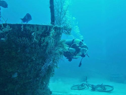 Grand Cayman  Grand Cayman (George Town) Discover SCUBA Dive Tour Booking