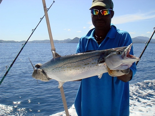 Castries sport fishing Tour Cost