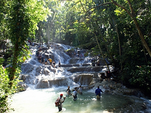 Falmouth Dunn's River Falls Sightseeing Shore Sightseeing Excursion Booking