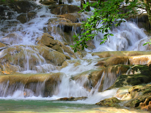 Falmouth Jamaica waterfall climb Sightseeing Excursion Prices