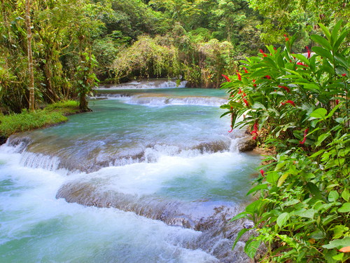 Falmouth Jamaica waterfall climb Sightseeing Trip Reservations