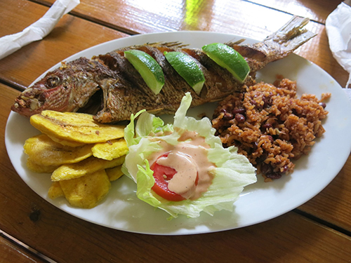 Roatan Caribbean Lunch Shore Excursion Tickets