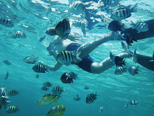 Grand Cayman Beach Private Excursion Tickets