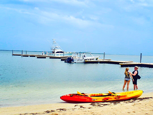 Grand Cayman Cayman Islands Snorkeling Private Tour Cost