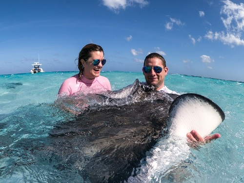 Grand Cayman stingray encounter Excursion Reviews