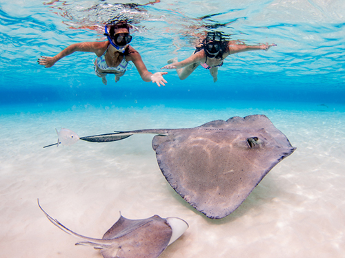 Grand Cayman Luxury Boat Private Excursion Cost