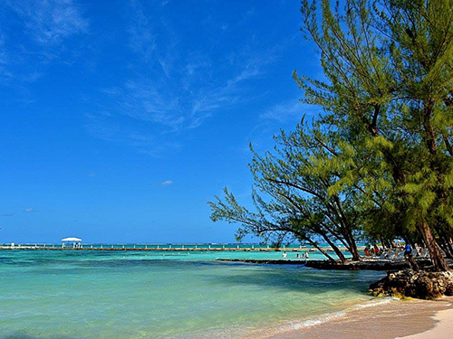 Grand Cayman Cayman Islands Starfish Point Cruise Excursion Prices