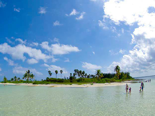 Grand Cayman Cayman Islands Coral Gardens Shore Excursion Prices