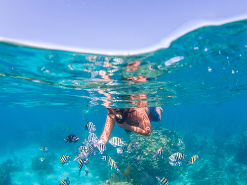 Grand Cayman Luxury Boat Cruise Excursion Cost