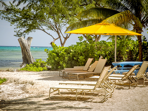 Grand Cayman Barrier Reef Private Trip Booking