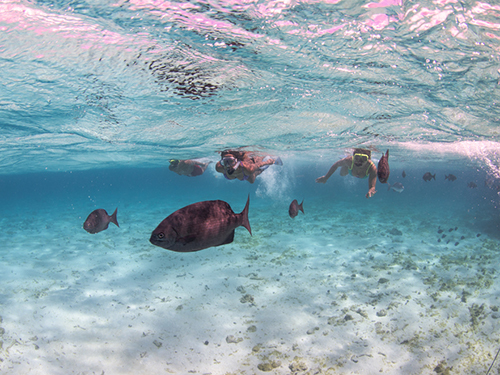 Grand Cayman Luxury Boat Private Trip Cost