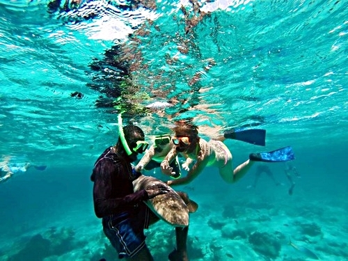 Grand Turk Turks and Caicos shallow reef snorkel Shore Excursion Prices