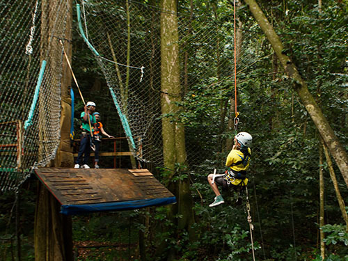 St. Lucia (Castries)  rainforest reserve Cruise Excursion Prices