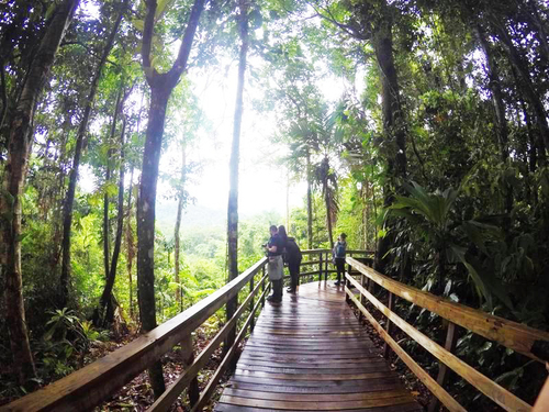 Puerto Limon Costa Rica rainforest gondola Cruise Excursion Tickets